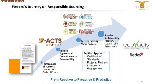 Ferrero: Moving along the Responsible Sourcing Journey