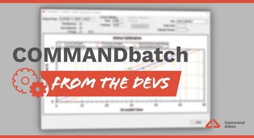 COMMANDbatch | Release Update 2021.1.1