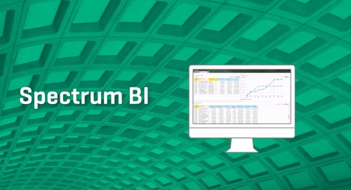 What Could Spectrum BI Do For You?