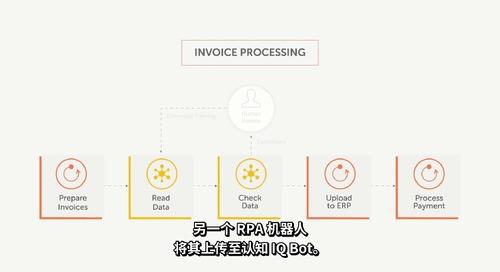 IQBot_Invoice_Processing_Demo_wVoice 3_zh-CN