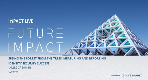 Seeing The Forest From The Trees: Measuring and Reporting Identity Security Success
