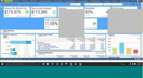 Finance and Project Analytics for Services Businesses
