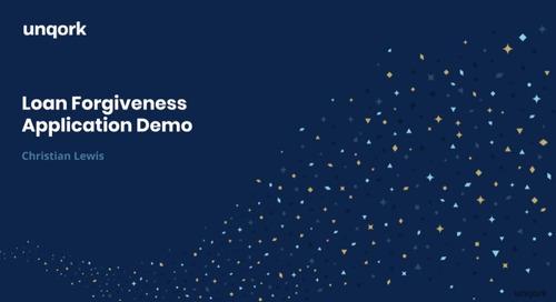Demo: Loan Forgiveness Application