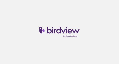 Birdview PSA Overview