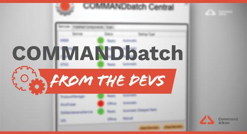 Introducing COMMANDbatch | Version 2020.1.1