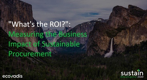 """What's the ROI?"": Measuring the Business Impact of Sustainable Procurement, Sustain 2020"