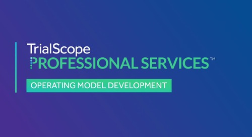 Advisory Services: Operating Model Development