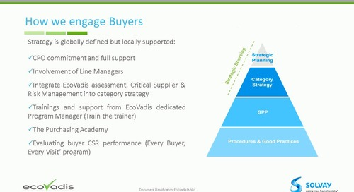 Solvay's strategy for ensuring buyer adoption and success