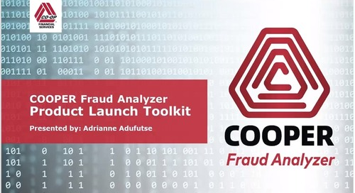 State Network Partner COOPER Fraud Analyzer Toolkit Training