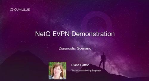 NetQ EVPN demonstration