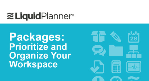 LiquidPlanner Packages Webinar