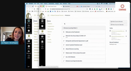 Using Modules in Canvas LMS