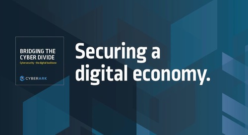 Bridging the Cyber Divide: Episode 1 - Securing a digital economy