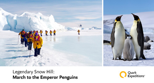 Legendary Snow Hill: March to Emperor Penguins
