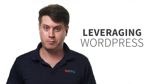 ProTip: Leveraging the Wordpress Admin Console - June 2019