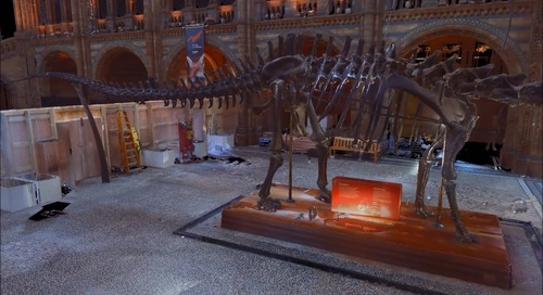 Meet Dippy the Dinosaur in 3D