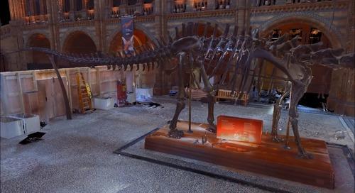 Conheça a Dippy o Dinossauro em 3D