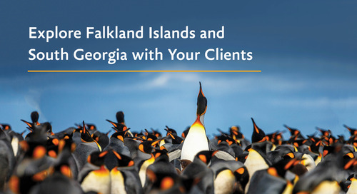 Explore the Falkland Islands (Islas Malvinas) & South Georgia with your Clients