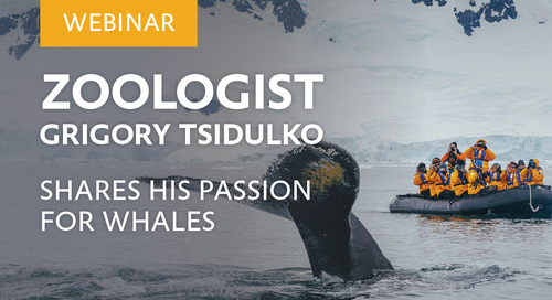 Webinar: Zoologist Grigory Tsidulko shares his passion for whales