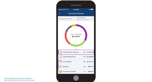 Expense and Income Analysis FinApp - Consumer Audience