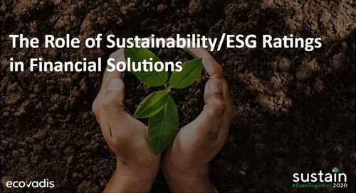 The Role of Sustainability/ESG Ratings in Financial Solutions, Sustain 2020