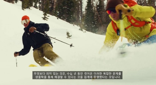 [Korean] Could Skis Created From Biobased Material Mean a Cleaner Future for Snow Sports_ko
