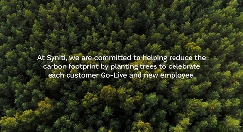 Syniti Forest — Syniti Gives Back