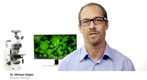 ZEISS Axioscope 5  – the smart fluorescence microscope for your routine lab