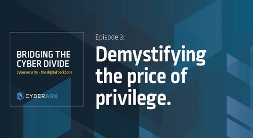 Bridging the Cyber Divide: Episode 3 - Demystifying the Price of Privilege