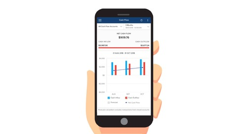 Envestnet | Yodlee Cash Flow Analysis FinApp
