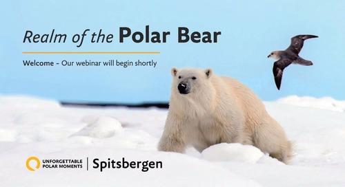 Spitsbergen - Realm of the Polar Bear