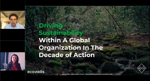 Driving Sustainability Within A Global Organization In The Decade of Action