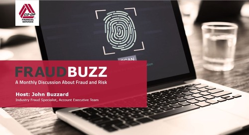 FraudBuzz Webinar - November 2017