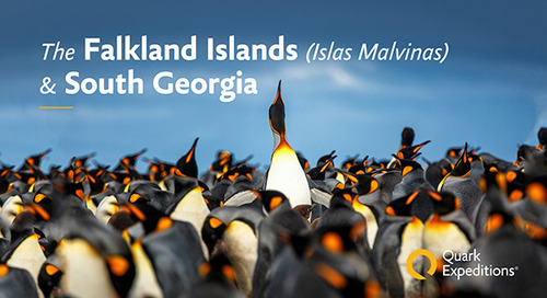 The Falkland Islands (Islas Malvinas) & South Georgia