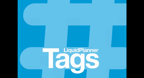 LiquidPlanner Tags