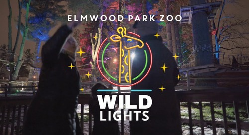 Breaking New Ground at Elmwood Park Zoo