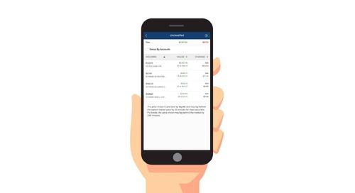 FinApp: Envestnet | Yodlee Investment Holdings
