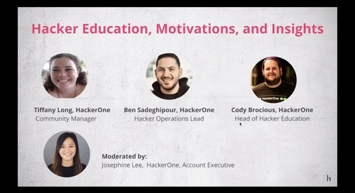 Hacker Education, Motivations, and Insights
