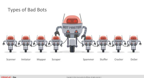 Defending Against Malicious Bot Attacks: Where, When, and How