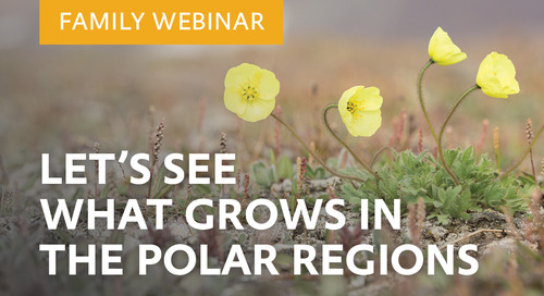 Webinar: Family-friendly talk: Let's see what grows in the Polar Regions!