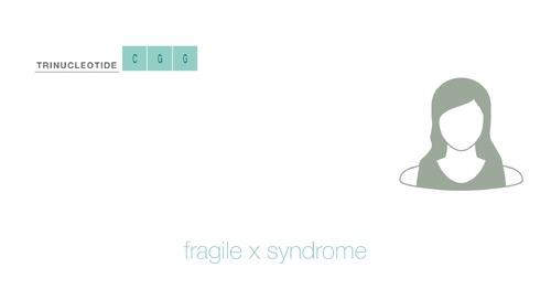 Horizon Post Test: Fragile X