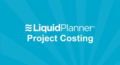 LiquidPlanner Project Costing