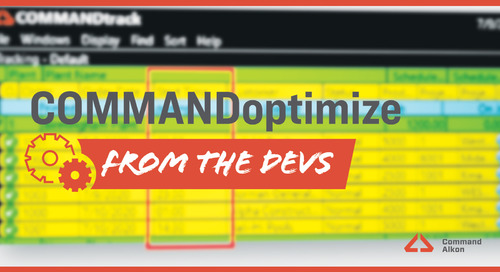 Introducing COMMANDoptimize   Version 2020.3