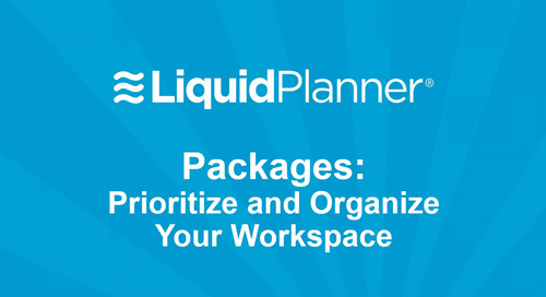 LiquidPlanner Packages (new)