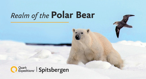 Spitsbergen | Realm of the Polar Bear