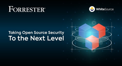 Taking Open Source Security to the Next Level