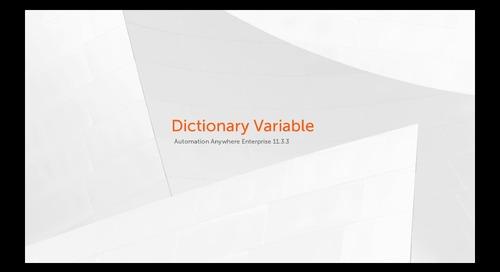 Enterprise 11.x Features - Dictionary Variable