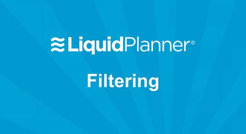 LiquidPlanner Filtering