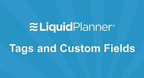LiquidPlanner Tags and Custom Fields