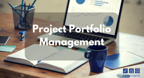 Project Portfolio Management as a Game Changer: Why Businesses Need PPM in 2017 to Drive Value